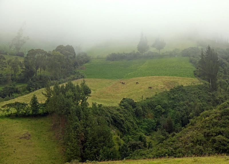 Ecuador 2012: Mindo - 002 Countryside in the Mindo area
