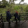 Ecuador 2012: Sacha Lodge - Martin and Jill birdwatching from the tree tower
