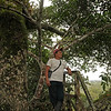 Ecuador 2012: Sacha Lodge - Guide Donaldo on the tree tower