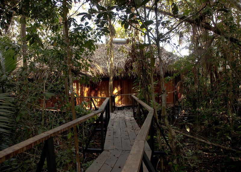 Ecuador 2012: Sacha Lodge - The various buildings at Sacha are connected by an elevated boardwalk