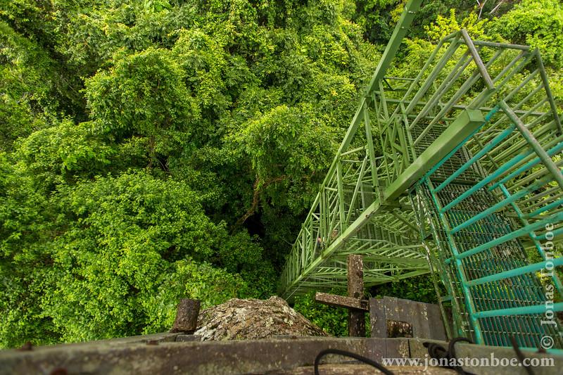 Kapok Canopy Tower