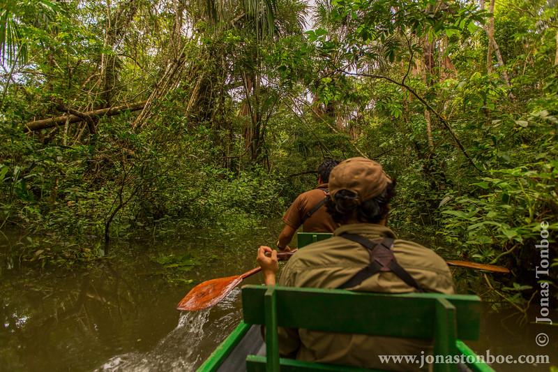 Exploring a Creek by Canoe