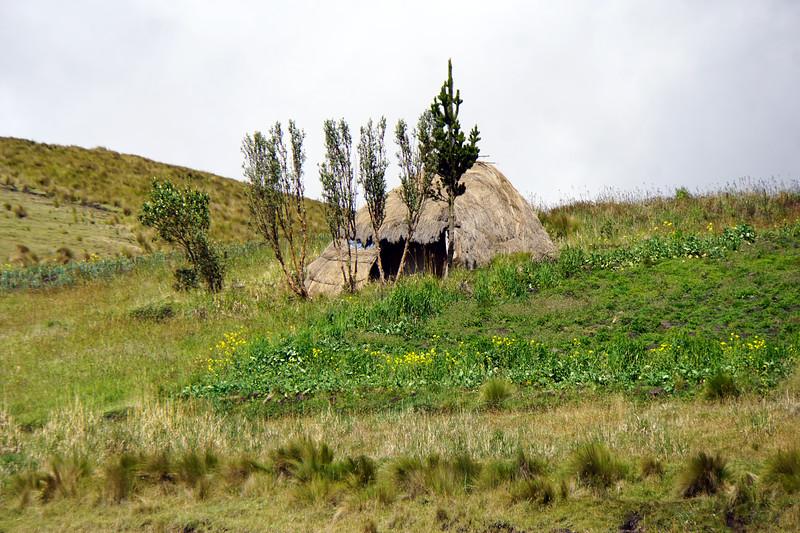 La Chozas, made from Paparosa grass