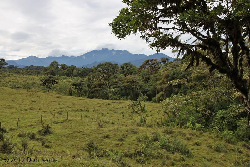 Pichincha Volcano, old Nono-Mindo Road, Aug 17.