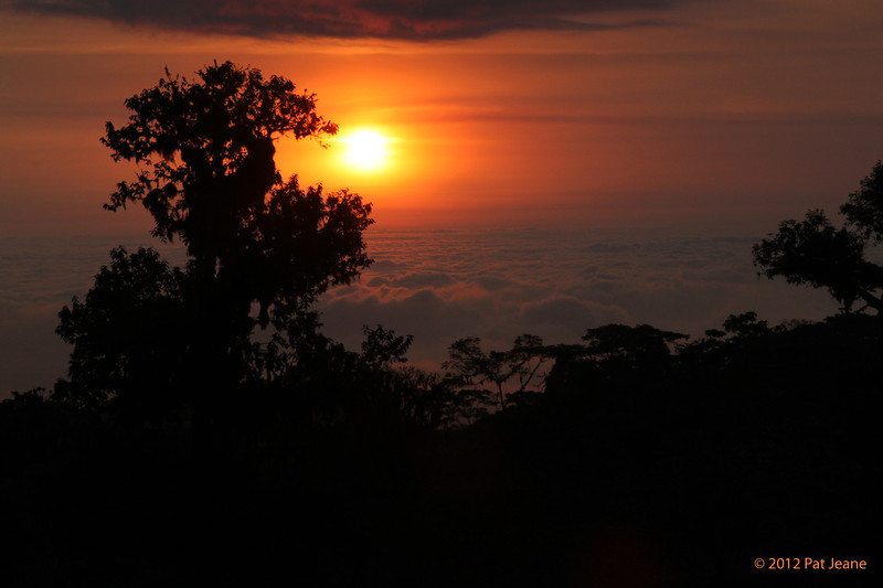 Birdwatcher's House. Aug 9. Above the clouds, our only sunset.
