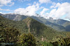 Pichincha Volcano from the trails of  Yanacocha Reserve, Aug 18,