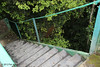 Tower steps (70 in all), Rio Silanche Bird Sanctuary, Aug 13.