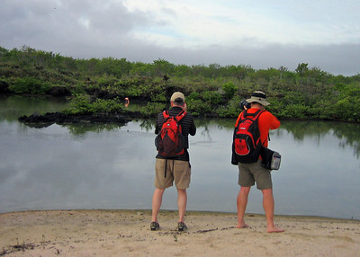 On our last morning we went ashore onto Santa Cruz Island in search of the flamingos who sometimes stop in this lagoon.  We found only one....but that was better than nothing.  Here Jon Z and I line up the same shot.