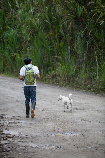 Our guide walks with his son's dog during our bird-watching trip at 6:30AM.