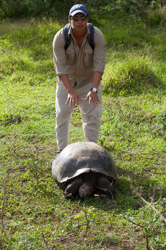 Christian demonstrates the tortoise mating process.