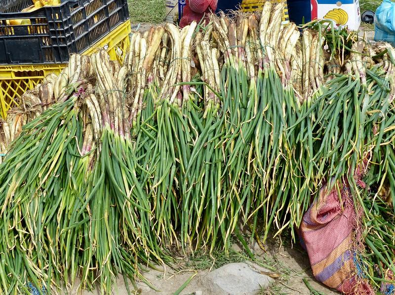 Otavalo market - leeks