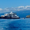 Our Galapagos cruise ship, the Haugan Petrel