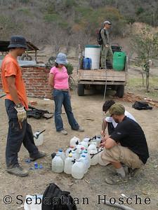 2006-11-07_11683 we water trees in El Toro wir wässern Bäume in El Toro regamos los arboles en El Toro