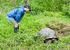 That is sure one big Giant Tortoise