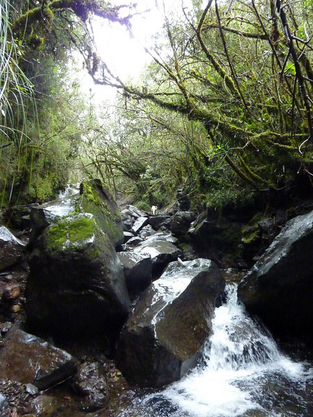 Waterfall hike at Cotopaxi