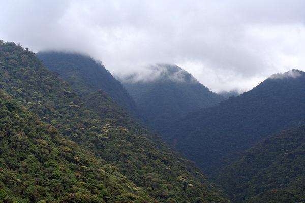 Hills of Tandyapa