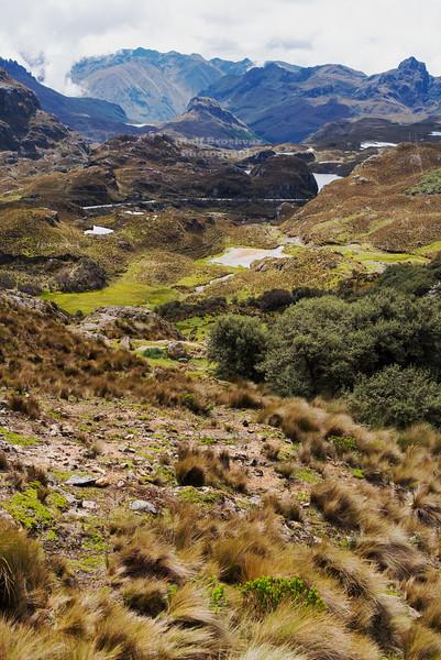 Tres Cruces pass in Cajas National Park, Ecuador