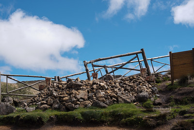 Tres Cruces at Cajas National Park
