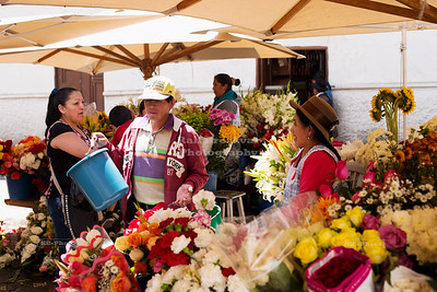 Flower Market in Cuenca