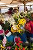Flower Market in Cuenca