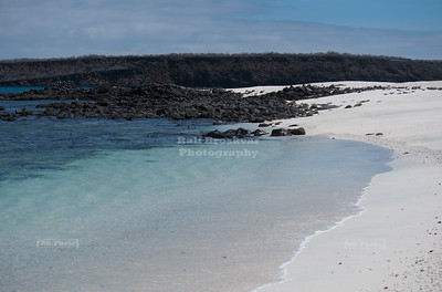 Mosquera Island, Galapagos