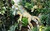 Iguana Statue