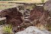 Cotopaxi National Park;