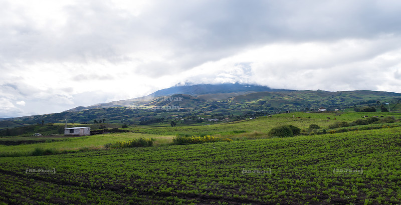 At the foot of the Chimborazo Volcano