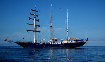 The Mary Anne