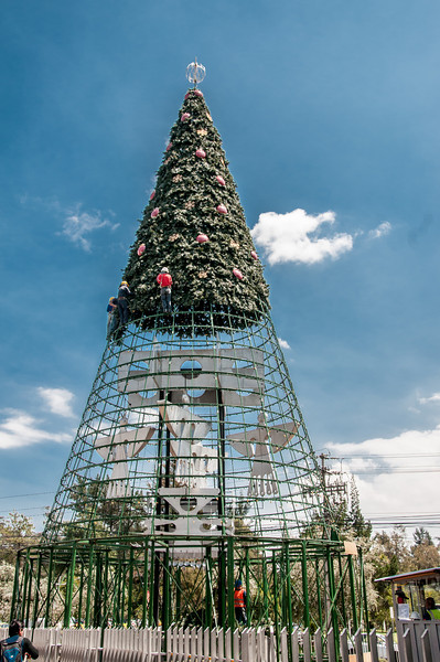 • Location - Quito, Ecuador<br /> • They are starting to build a Christmas Tree already