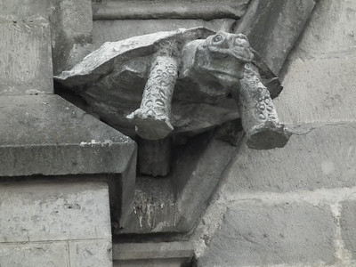 As long as the gargoyles are exchanged for Ecuadorian animals it's fitting to have a Galapagos tortoise