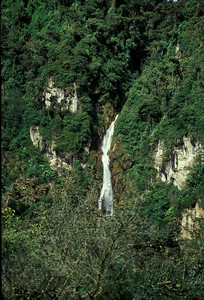 © Joseph Dougherty. All rights reserved.  Waterfall cascading down the eastern side of the Andes foothills, on the edge of the Amazon.   Amazonas District, Ecuador.