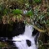 Hot Springs hike