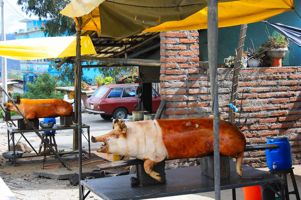 Roast pigs; Pan-Americana north of Cuenca, Ecuador