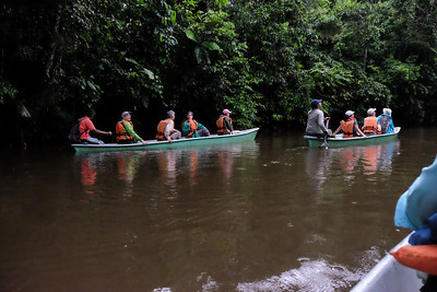 Bird sightings on the way to the Sapococha Lagoon.