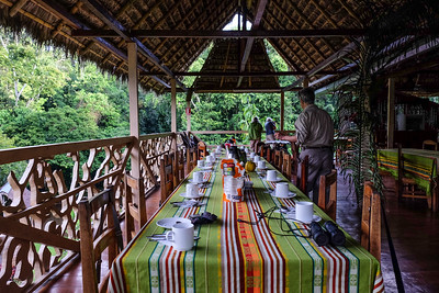 Dining area with a wonderful jungle overlook.