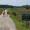 we took a ride out to the Botany Bay nature preserve.  all protected low-land marshes and beach.