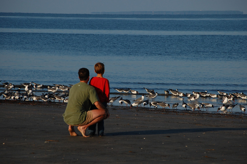 a young fella and his dad walking the beach early in the morning