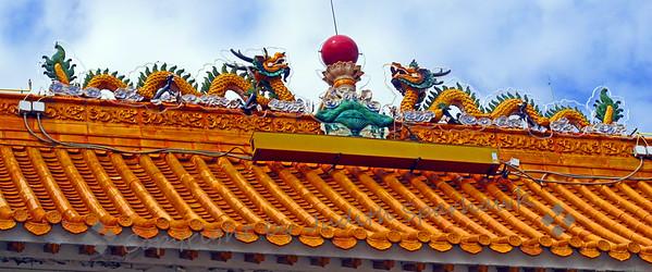 Harbin Dragons