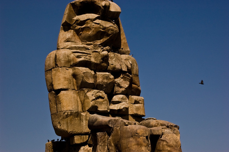 Title: Fly By<br /> Date: October 2009<br /> One of the statues of the Colossi of Memnon.