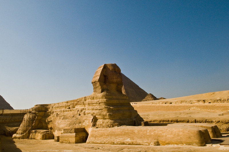Title: Cat in the Sun<br /> Date: October 2009<br /> Giza.  The Great Sphinx.