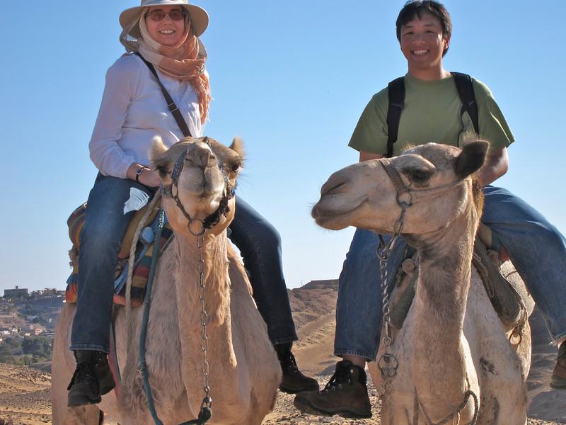 Camel Tour at Aswan (13)