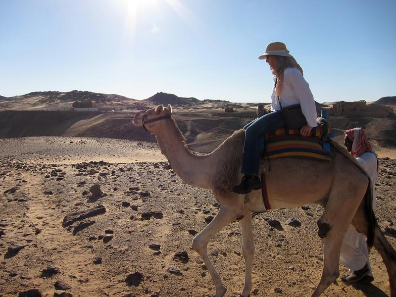 Camel Tour at Aswan (16)