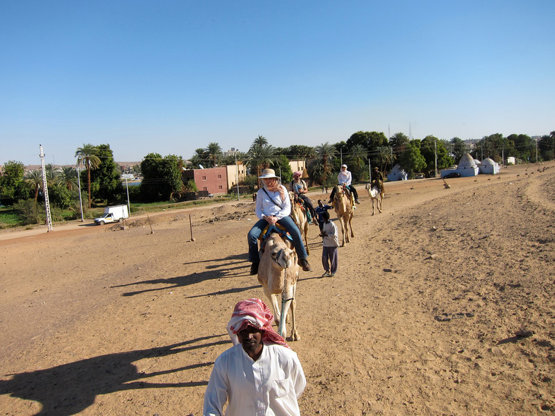 Camel Tour at Aswan (3)
