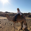 Camel Tour at Aswan (15)