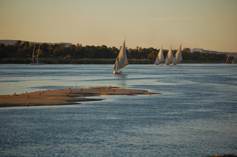 Nile by Aswan (2)
