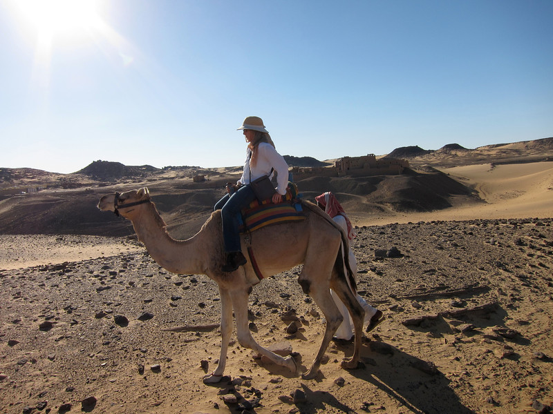 Camel Tour at Aswan (14)