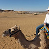 Camel Tour at Aswan (8)