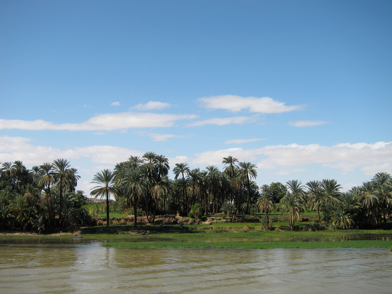Cruising the Nile (8)