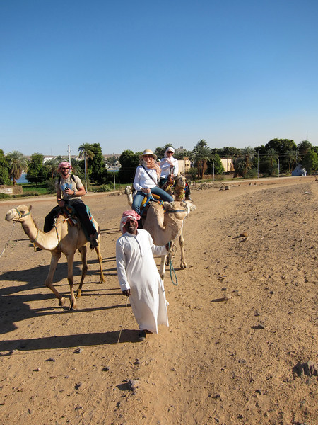 Camel Tour at Aswan (4)